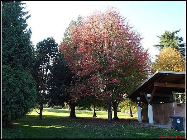玩美加族-加拿大day8--9史丹利公園0014(001).jpg