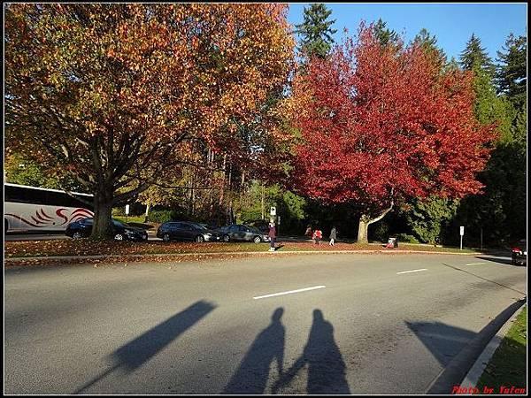 玩美加族-加拿大day8--9史丹利公園0051(001).jpg
