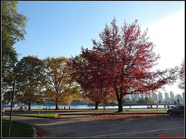 玩美加族-加拿大day8--9史丹利公園0058(001).jpg