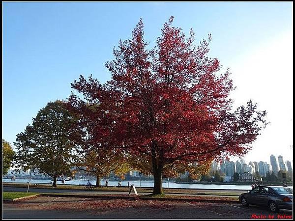 玩美加族-加拿大day8--9史丹利公園0065(001).jpg