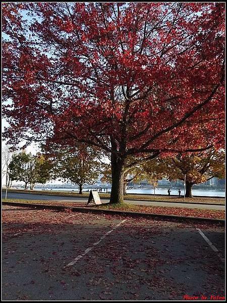 玩美加族-加拿大day8--9史丹利公園0070(001).jpg