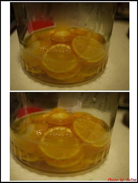 蜜漬橙片巧克力05.jpg