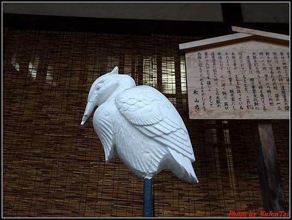 日本-四國之旅day3-7道後溫泉古街漫遊057.jpg