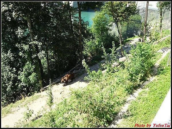 德瑞day4-5熊公園0022.jpg