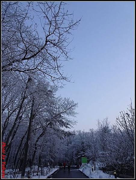 day3-8 輕井澤雪景0040.jpg