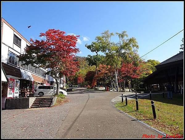北海道day5-2 支笏湖014.jpg