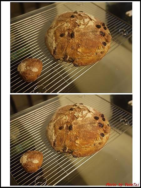 免揉麵包03.jpg