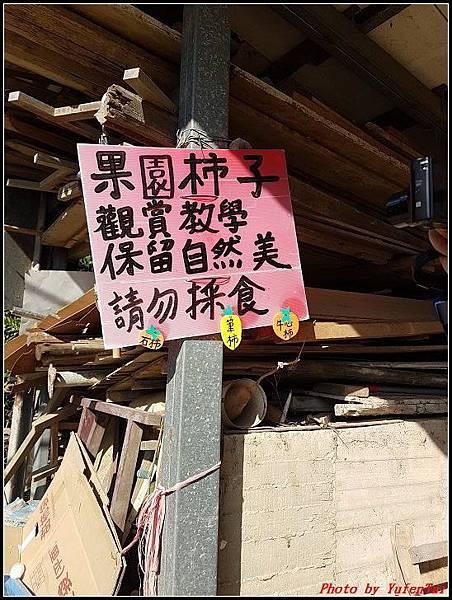 新埔-味衛佳柿餅042.jpg