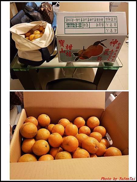 桔子果醬01.jpg