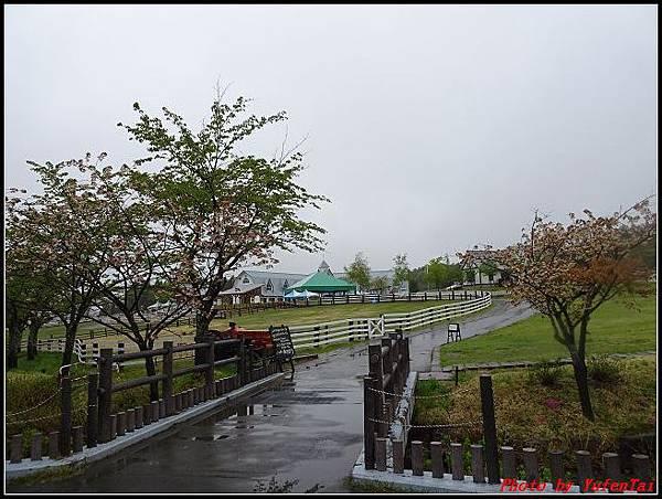能登加賀屋day4-2 牧歌之里牧場092.jpg