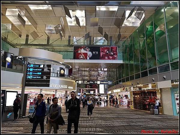 義大利day11-1 新加坡-台灣000039.jpg
