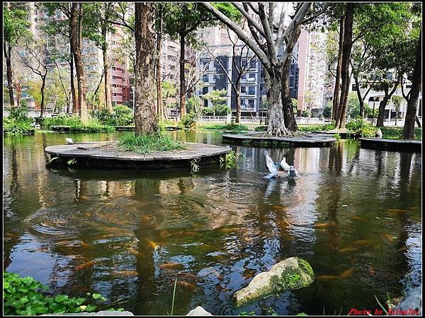 6.大東濕地公園 大東文化藝術中心029.jpg