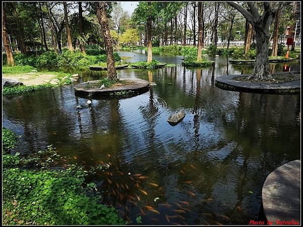 6.大東濕地公園 大東文化藝術中心039.jpg