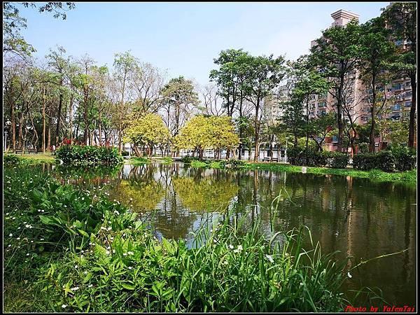 6.大東濕地公園 大東文化藝術中心046.jpg