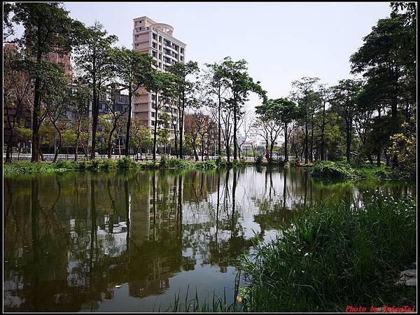 6.大東濕地公園 大東文化藝術中心048.jpg