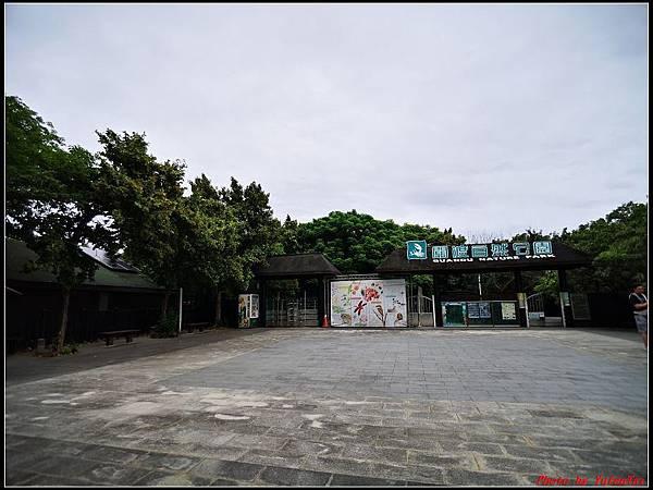 關渡自然公園0001.jpg