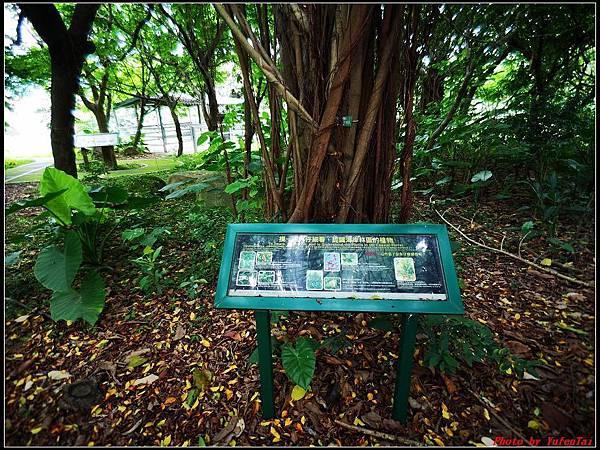 關渡自然公園0006.jpg