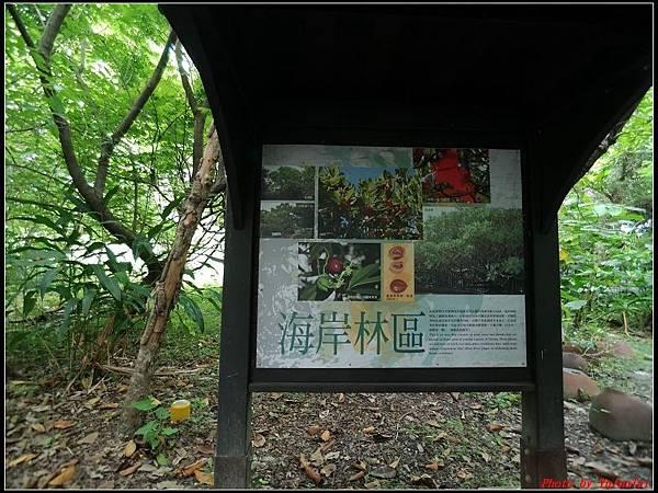關渡自然公園0007.jpg