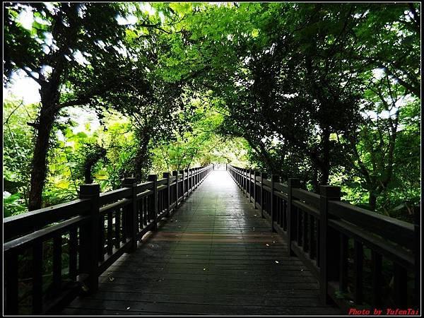 關渡自然公園0009.jpg
