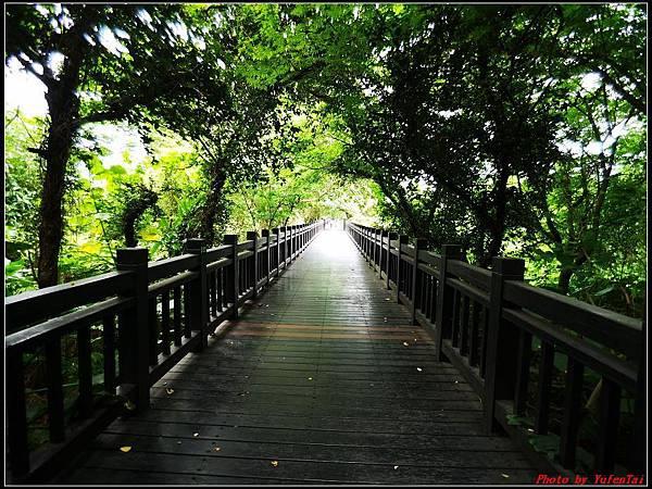 關渡自然公園0010.jpg