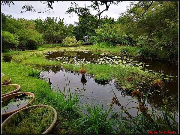 關渡自然公園0013.jpg