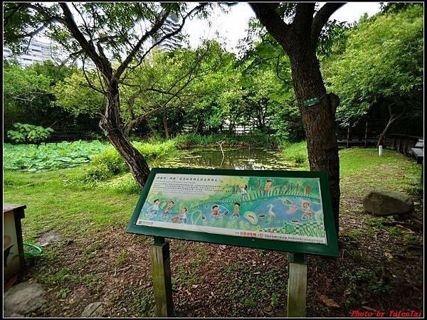 關渡自然公園0016.jpg