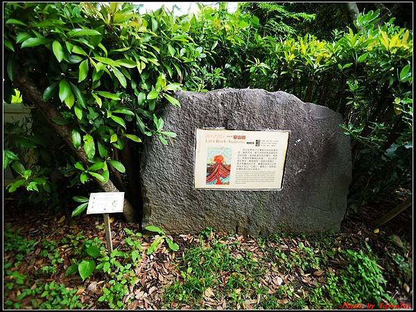 關渡自然公園0019.jpg