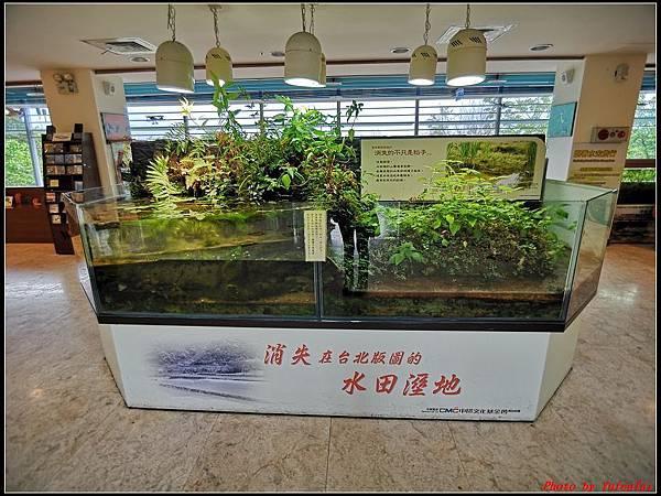 關渡自然公園0027.jpg