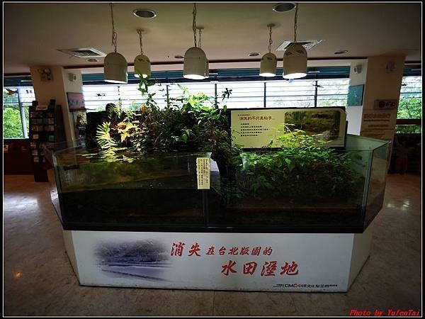 關渡自然公園0028.jpg