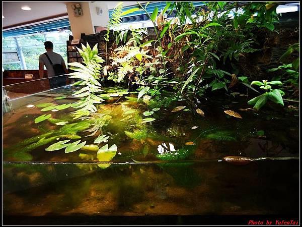 關渡自然公園0029.jpg
