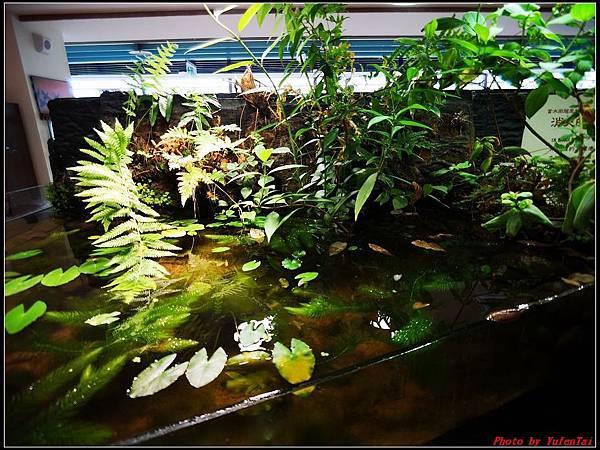 關渡自然公園0030.jpg