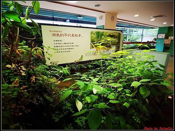關渡自然公園0031.jpg