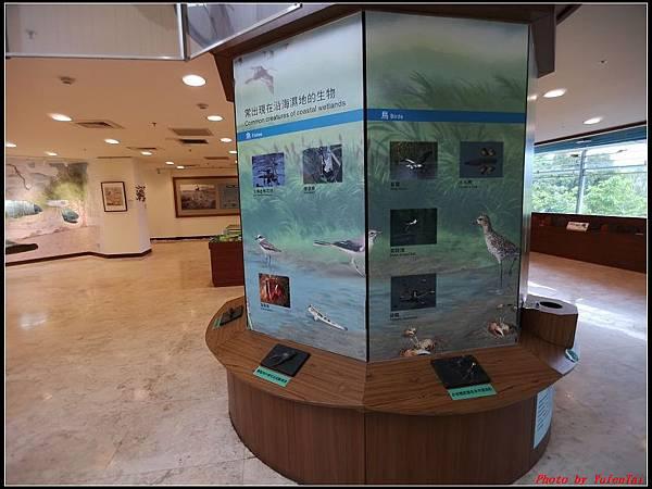 關渡自然公園0039.jpg