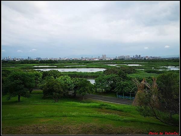 關渡自然公園0049.jpg