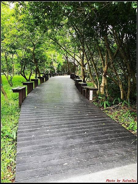 關渡自然公園0061.jpg