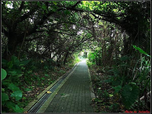 關渡自然公園0066.jpg