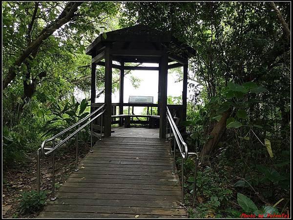 關渡自然公園0067.jpg