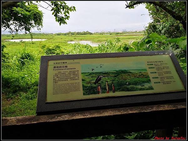關渡自然公園0068.jpg