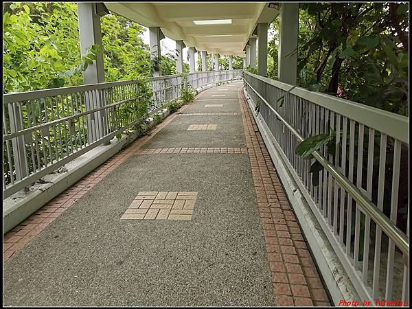 香港DAY3-3水晶巴士午餐團0237.jpg