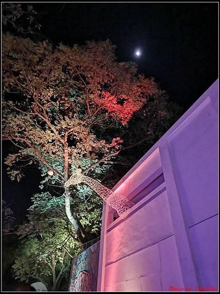 新竹麗池公園086.jpg