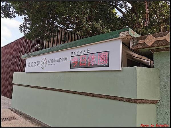 麗池公園櫻花汀甫圳賞櫻步道081.jpg