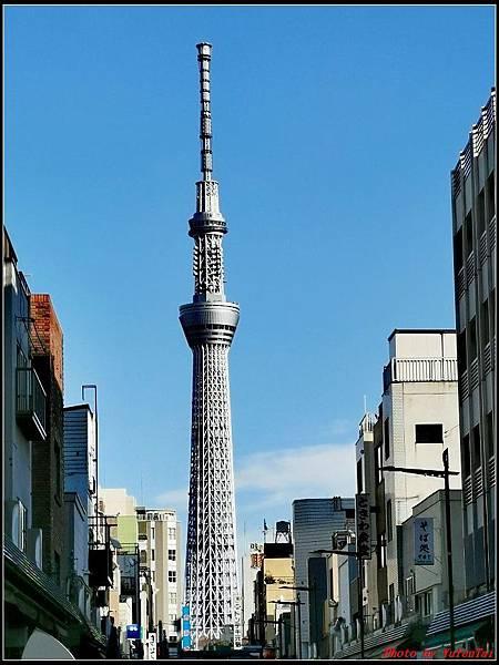 東京day2-3合羽橋道具街113.jpg