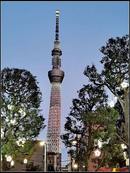 東京day2-5晴空塔037.jpg