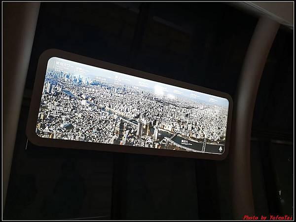 東京day2-5晴空塔149.jpg