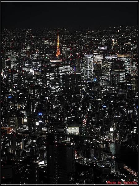 東京day2-5晴空塔186.jpg