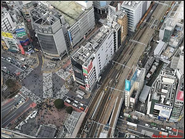 東京day3-3澀谷078.jpg