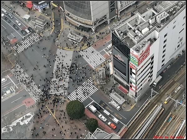 東京day3-3澀谷079.jpg