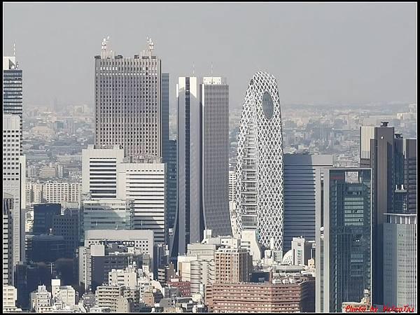 東京day3-3澀谷230.jpg