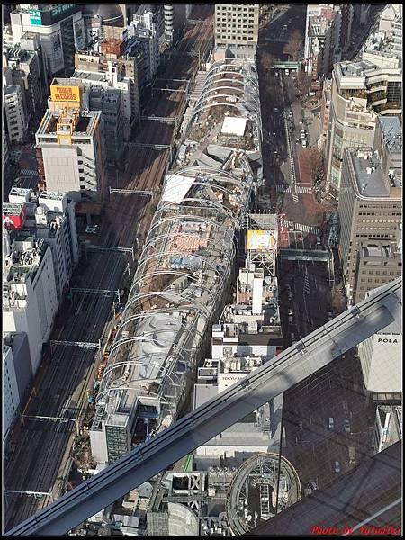 東京day3-3澀谷259.jpg
