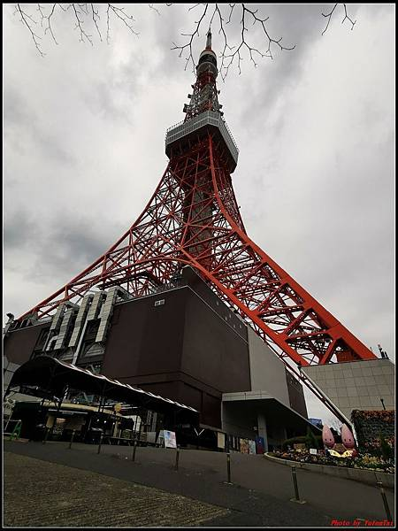 東京day4-2東京鐵塔133.jpg